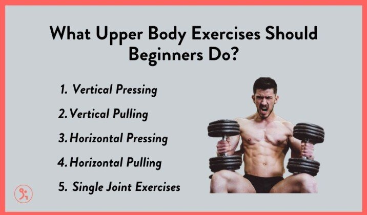 what upper body workouts should beginners do.jpg