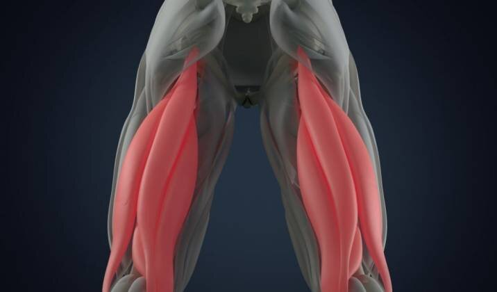 The Benefits Of Working Your Hamstrings.jpg