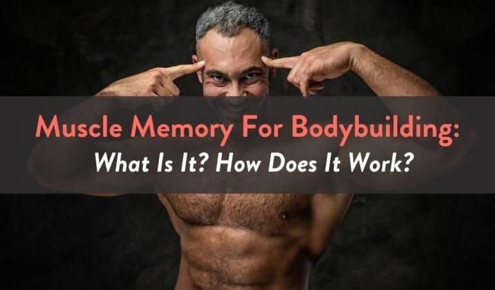Muscle Memory For Bodybuilding.jpg