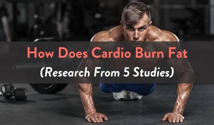 How Does Cardio Burn Fat.jpg