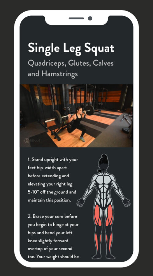Grasp and master new strength-building exercises. - Fitbod keeps your gym sessions fresh and fun by mixing up your workouts with new exercises and maximizing the use of your available equipment.Fitbod even works without any gym equipment!