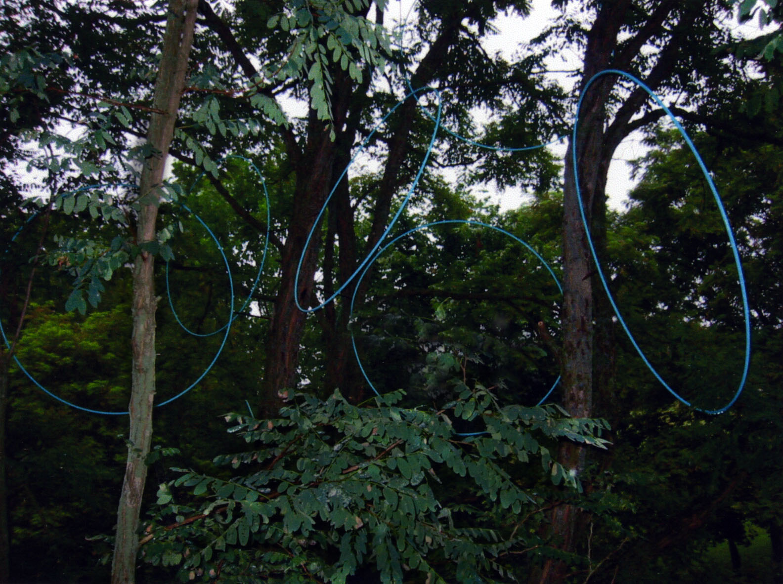 19 Spirit Play, 2004 site-specific installation Art Omi, steel, dimensions variable (1).jpg