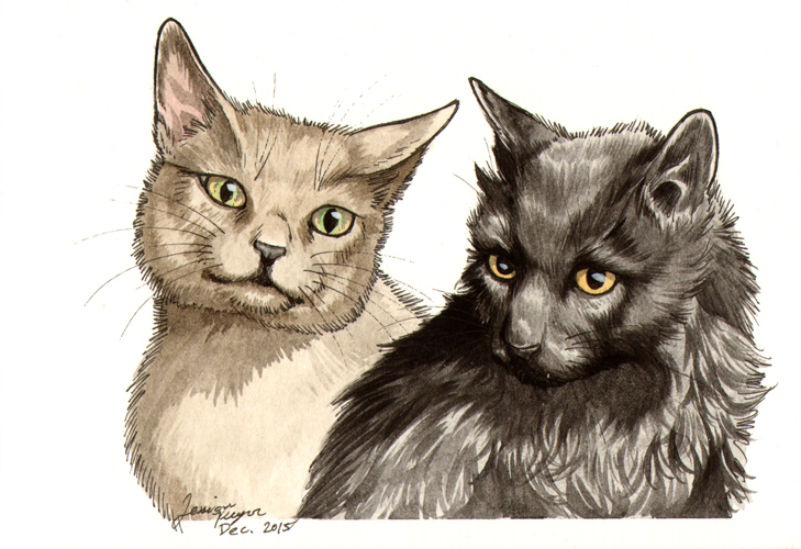 Booboo & Smokey - One of 2 commissioned portraits done in pen & ink with water color.2015