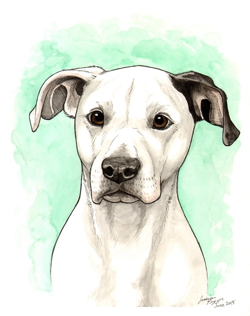 daisy - One of 2 commissioned portraits done in pen & ink with water color.2015