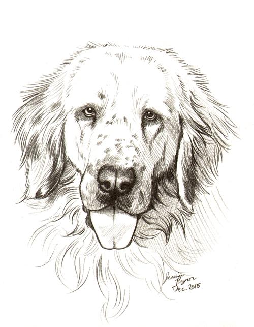 freckles - Commissioned portrait done in graphite pencil.2015