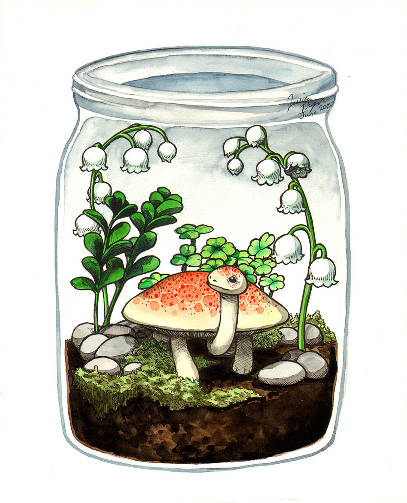 The tortoishroom terrarium - Pen & ink with water color on 8x10 water color paper.2015
