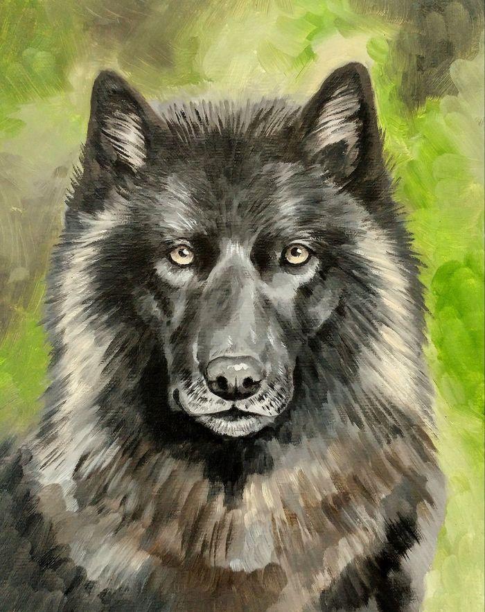 dark wolf - Oil paint on 8x10 canvas panel.2016