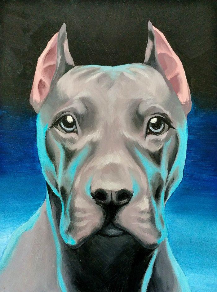 Blue Pit bull - Oil paint on 6x8 gesso board.2014