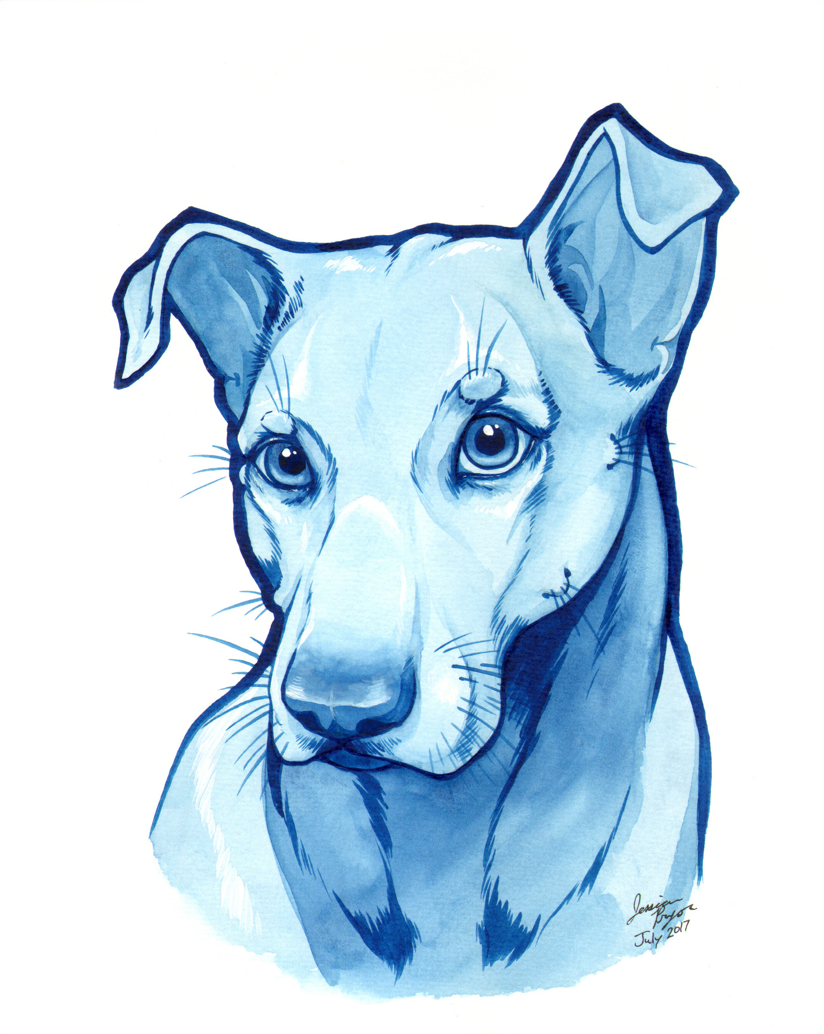 blue pittie - Water color done on 8x10 water color paper.2017
