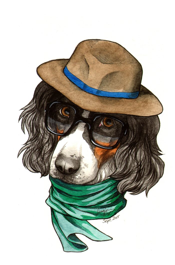 Hipster spaniel - Pen & ink with water color on 6x9 water color paper.2015