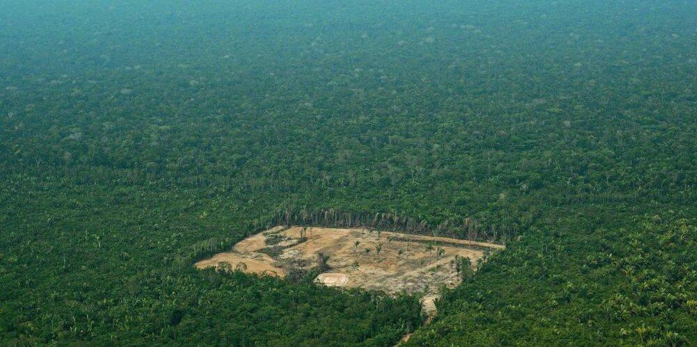 amazonia-urbana-1024x511.jpg