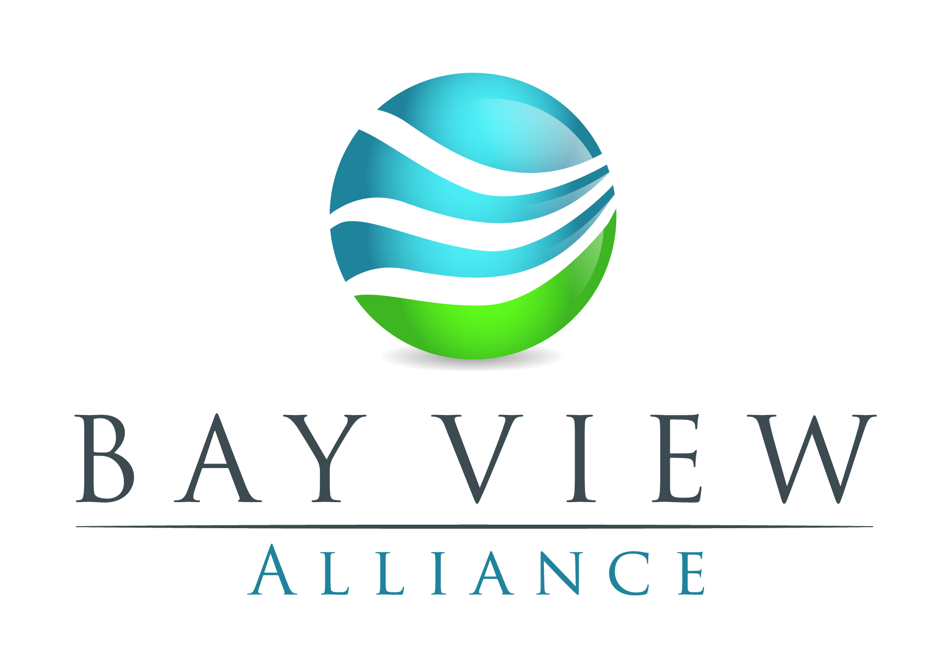 BVA_logo.jpg