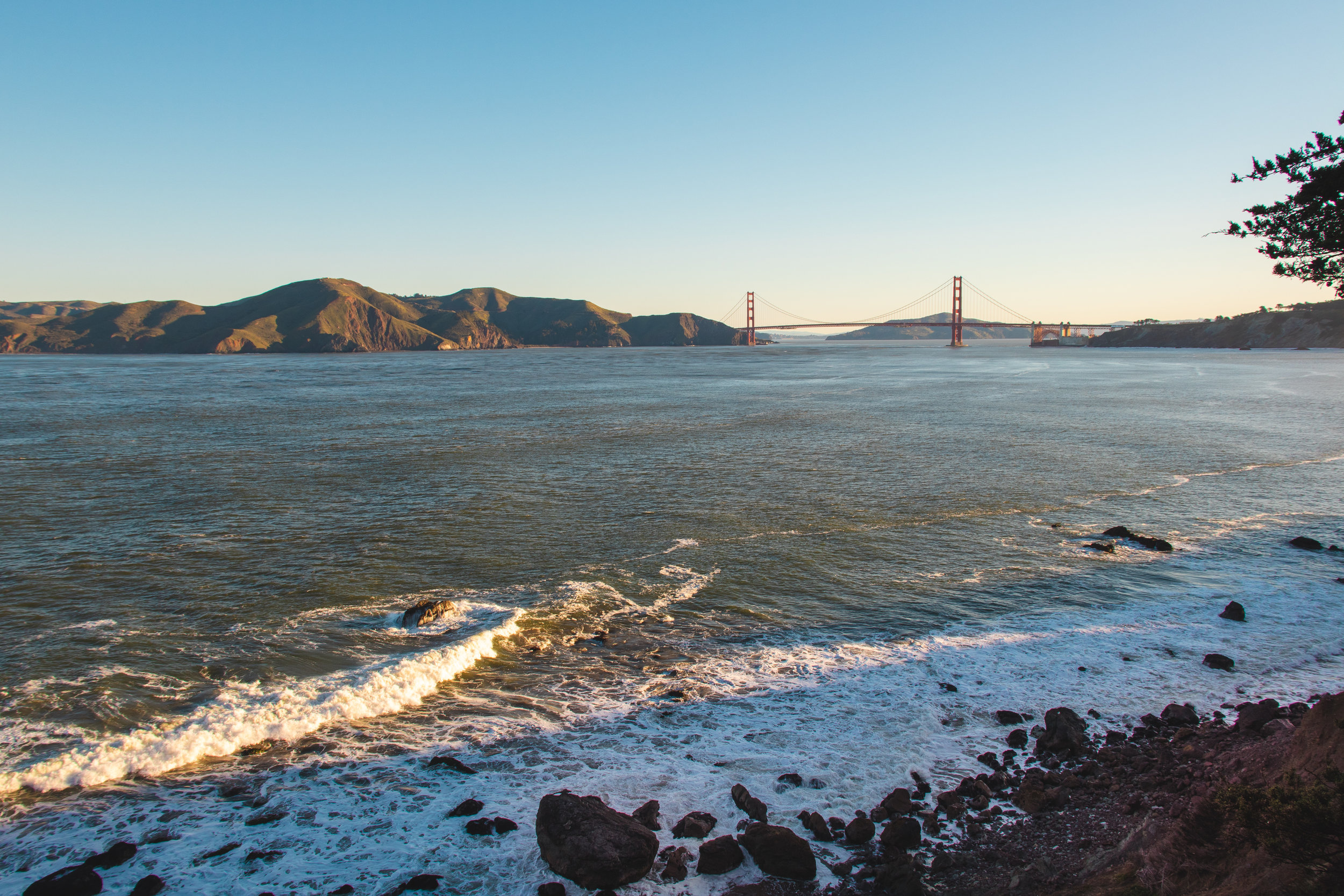 The Local's Guide to San Francisco
