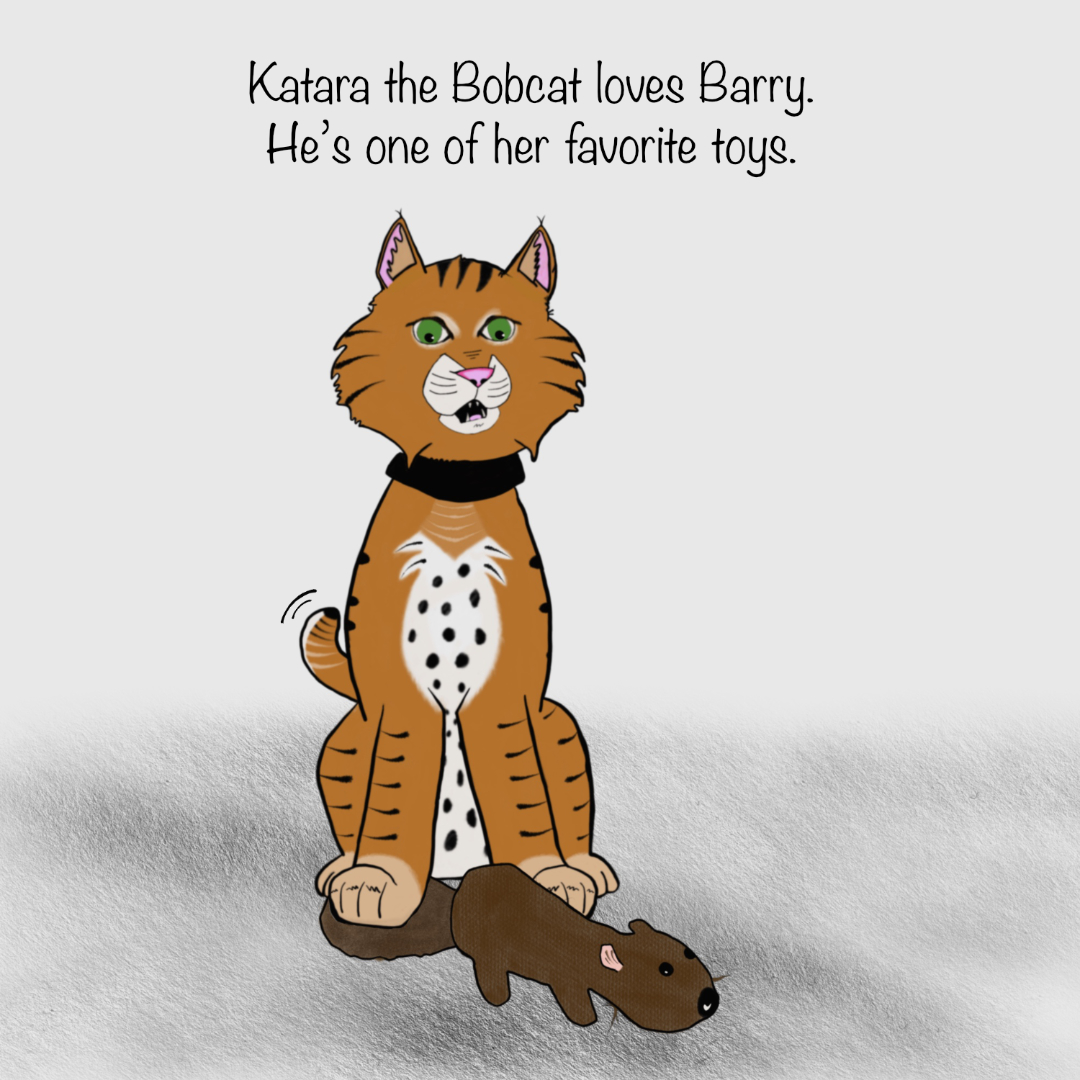 KT_0 barry beaver 02_IG.jpg