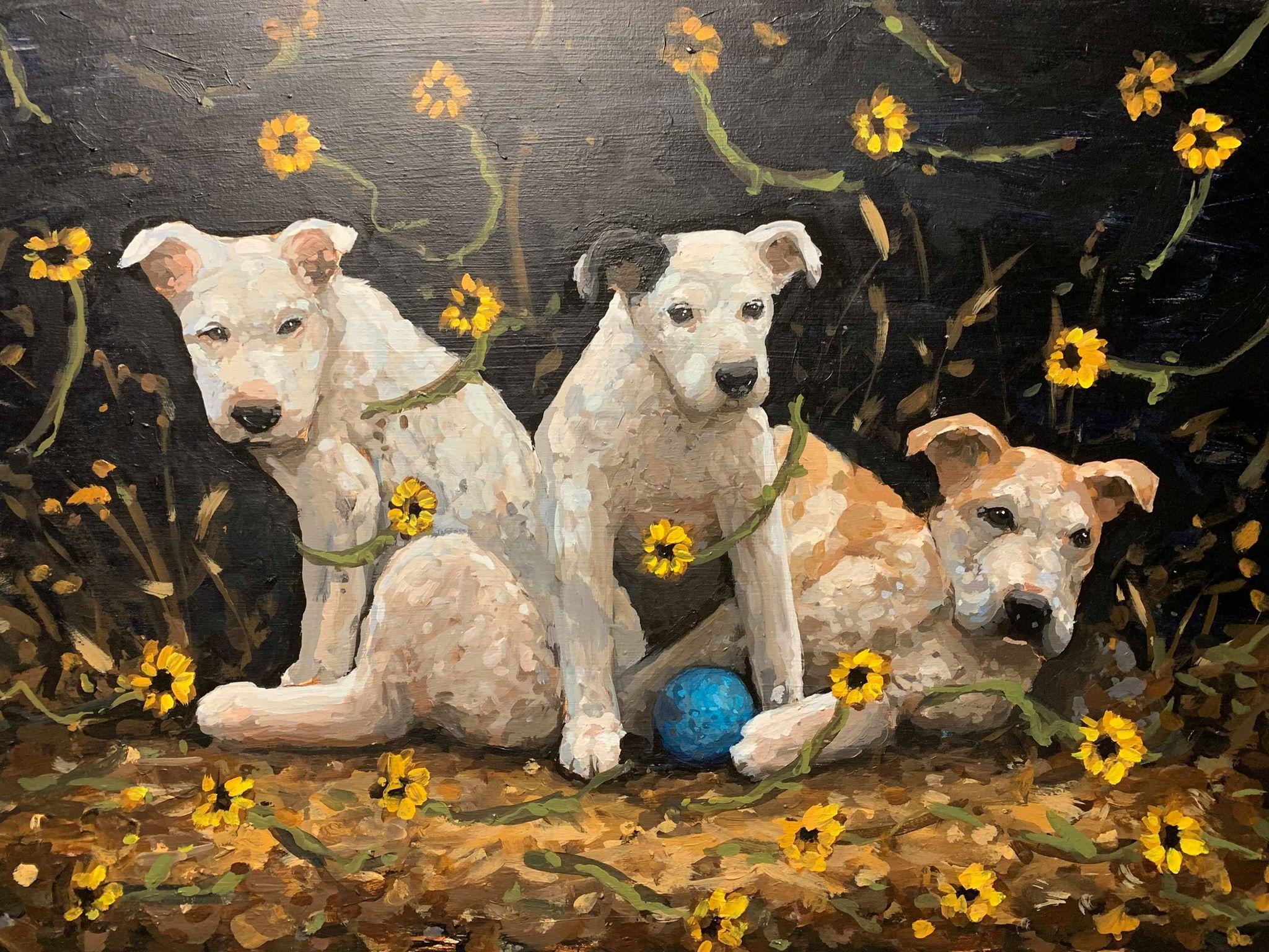 3 Rez Dogs with a Handball, 2019