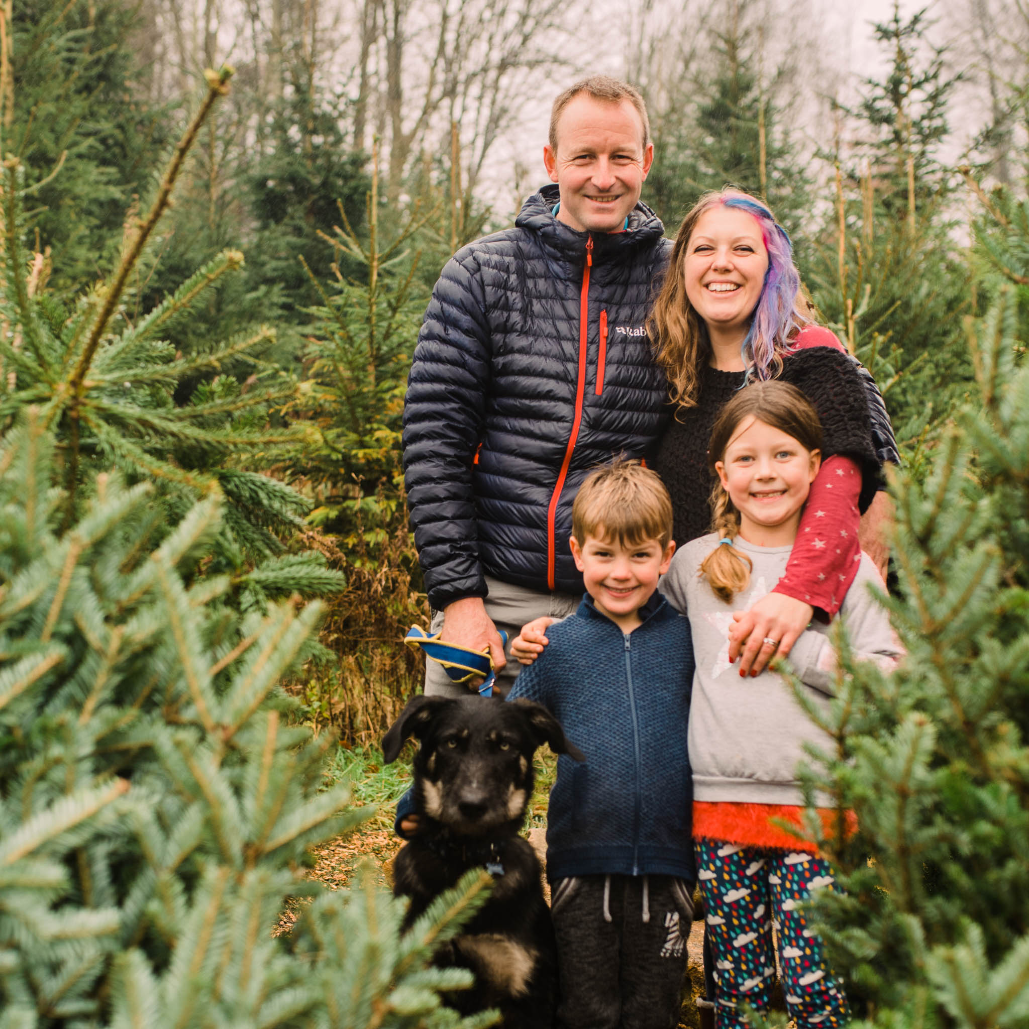 Family Christmas Tree Photoshoot Cheltenham