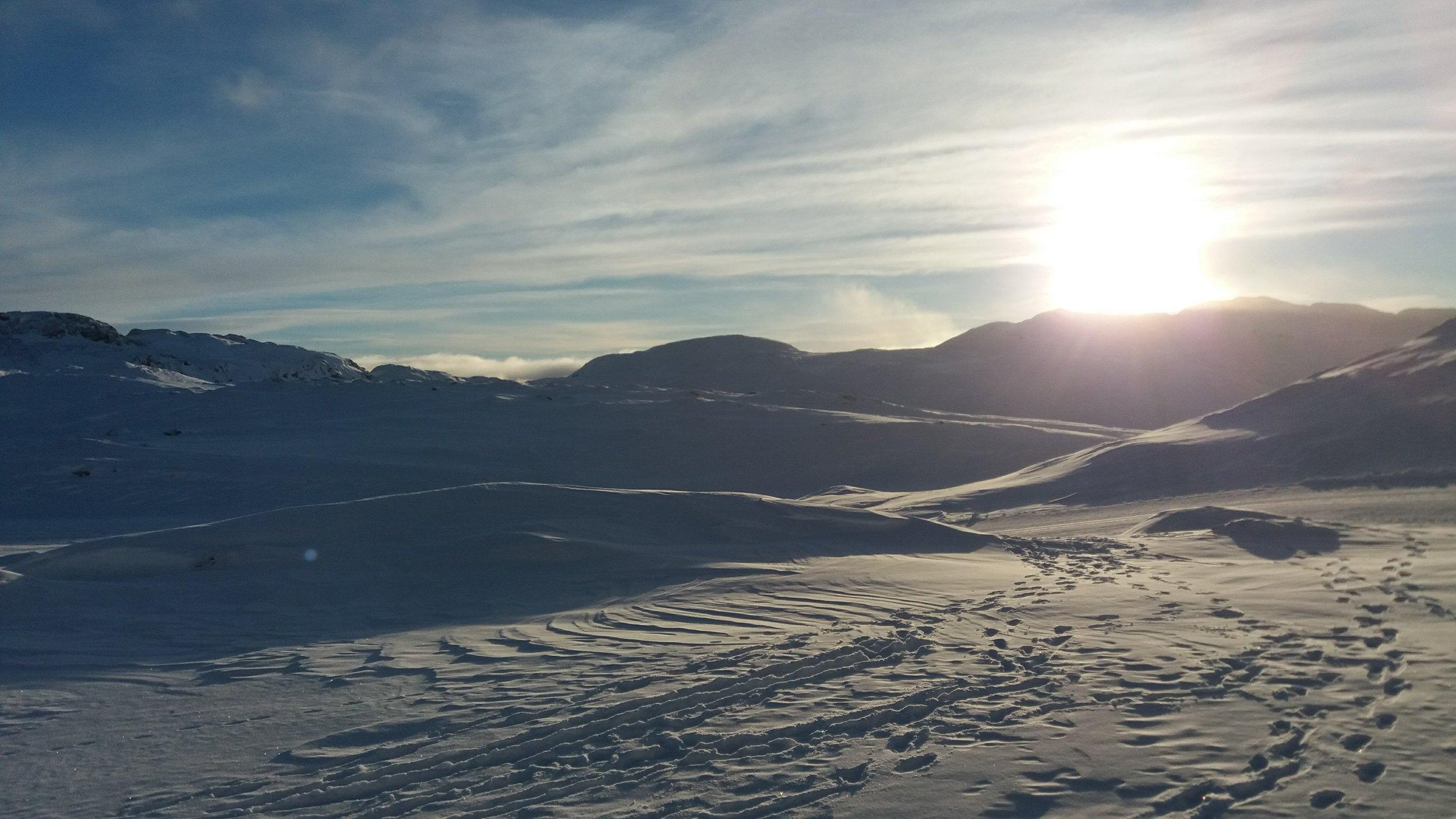 - Kære dig, som selv er begyndt at tænke lidt med, når KFS igen og igen har nævnt Grønland. Måske drømmer du selv om at rejse til Grønland, måske vil du bare gerne vide mere om, hvad det er for et vildt projekt KFS har kastet sig ud i.