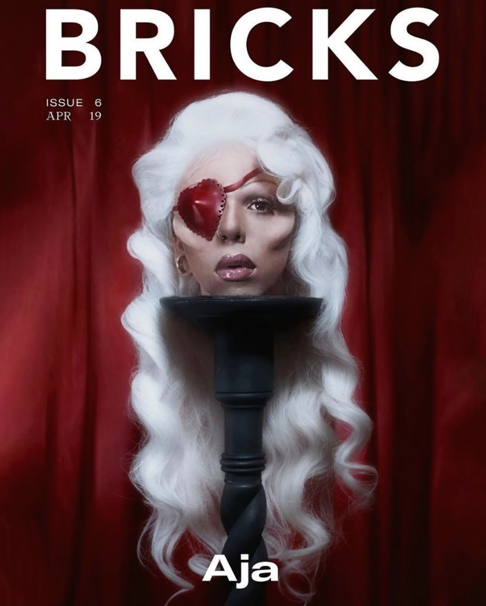 'AJA' Bricks Magazine Cover Story