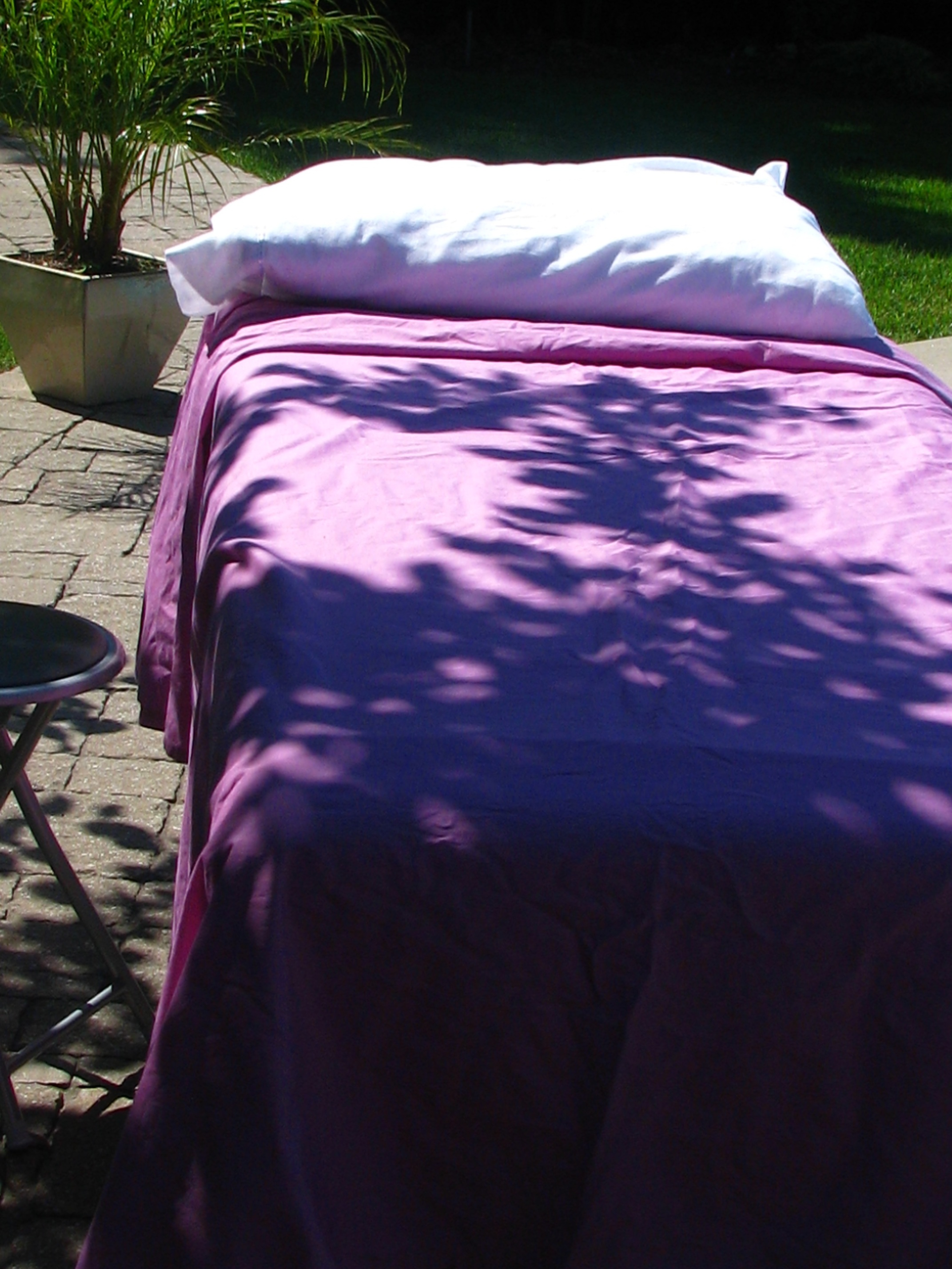 Reiki Sessions: anywhere you can find peace and serenity! ELE has a studio at the innovative Co-working 176.Space, 176 Lakeshore Drive in North Bay or can accommodate clients on location - at home, the office, by the pool, the lake, or your deck.