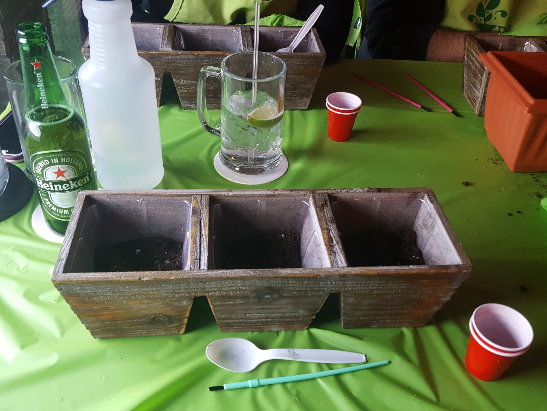 Plant Nite Herb Garden in Three Drawer Planter 3.jpg