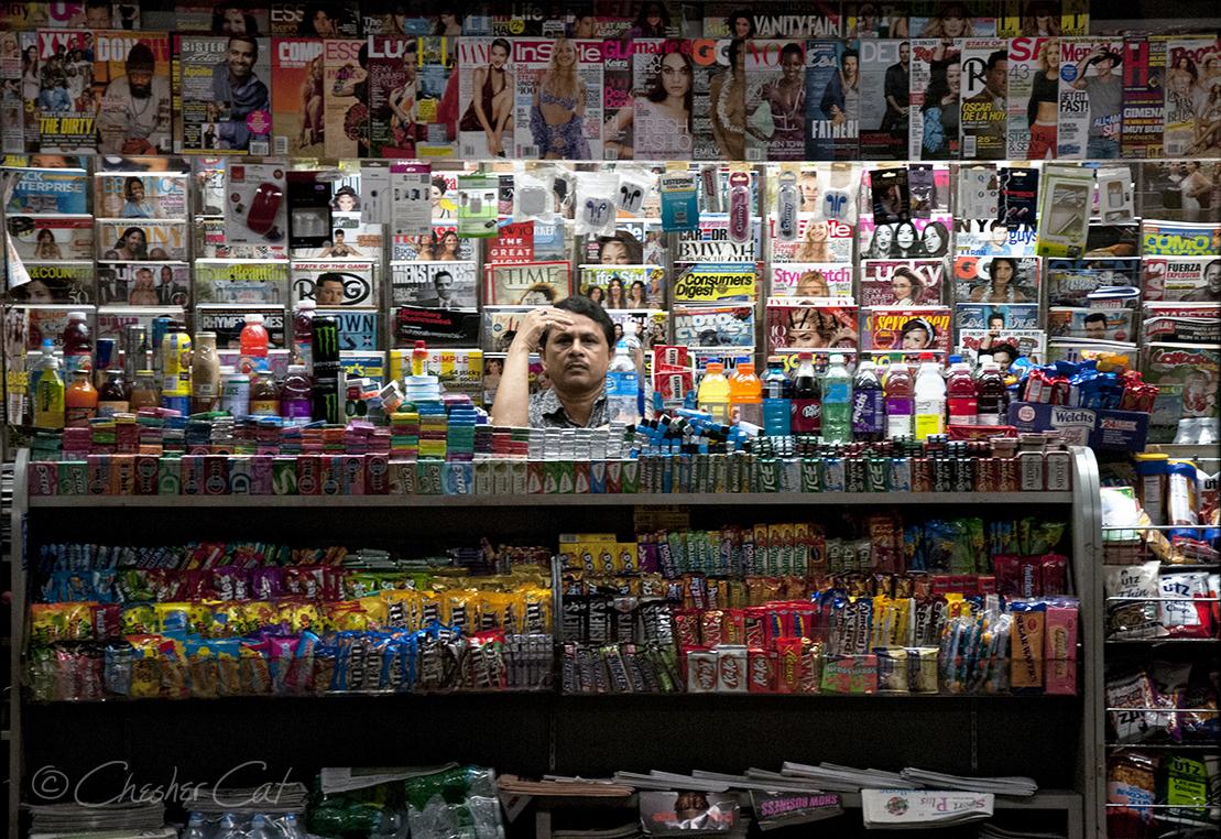 Newsstand Vendor, 2014
