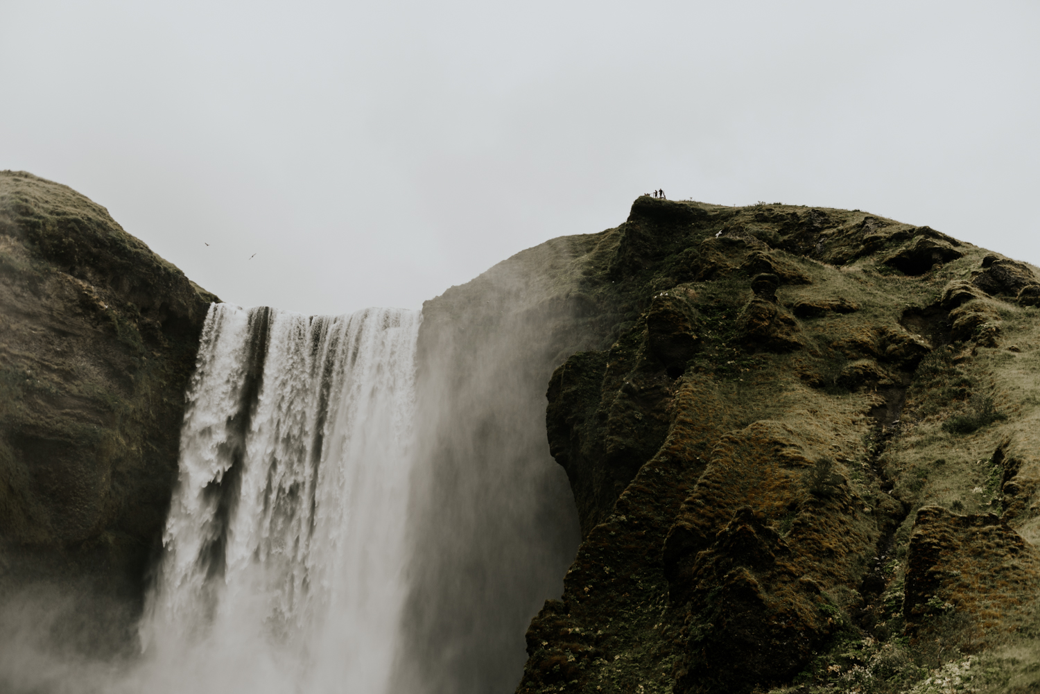 Couples Photo Session at Skogafoss Falls Iceland