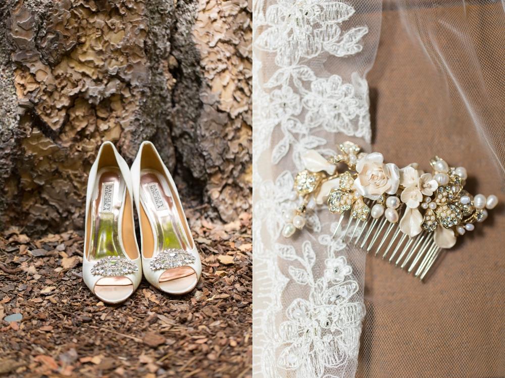 Yosemite-Wedding-Photographer002