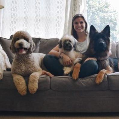 stephanie-dogs-768x396.jpg