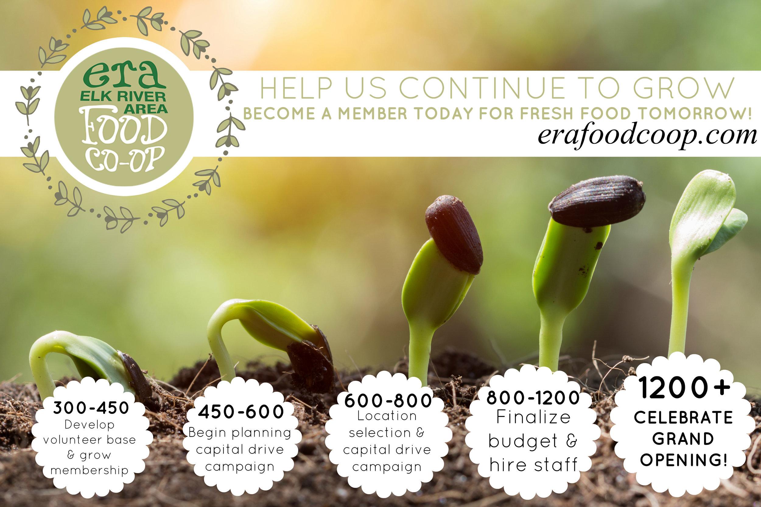 Elk River Area Food Co-op Developmental Timeline