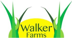 100% Pasture Based,non-GMO,& Antibiotic free