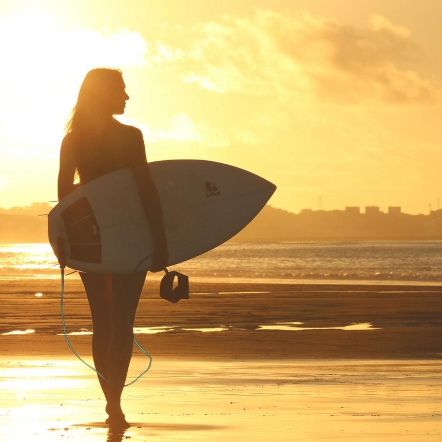 surf & shop -