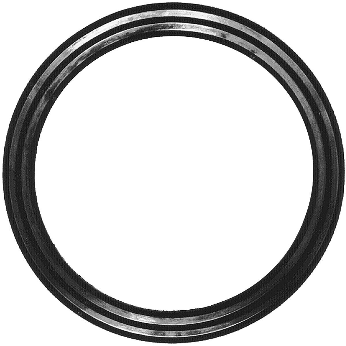 FLANGE GASKETS - Threaded flange gaskets and tapping flange gaskets