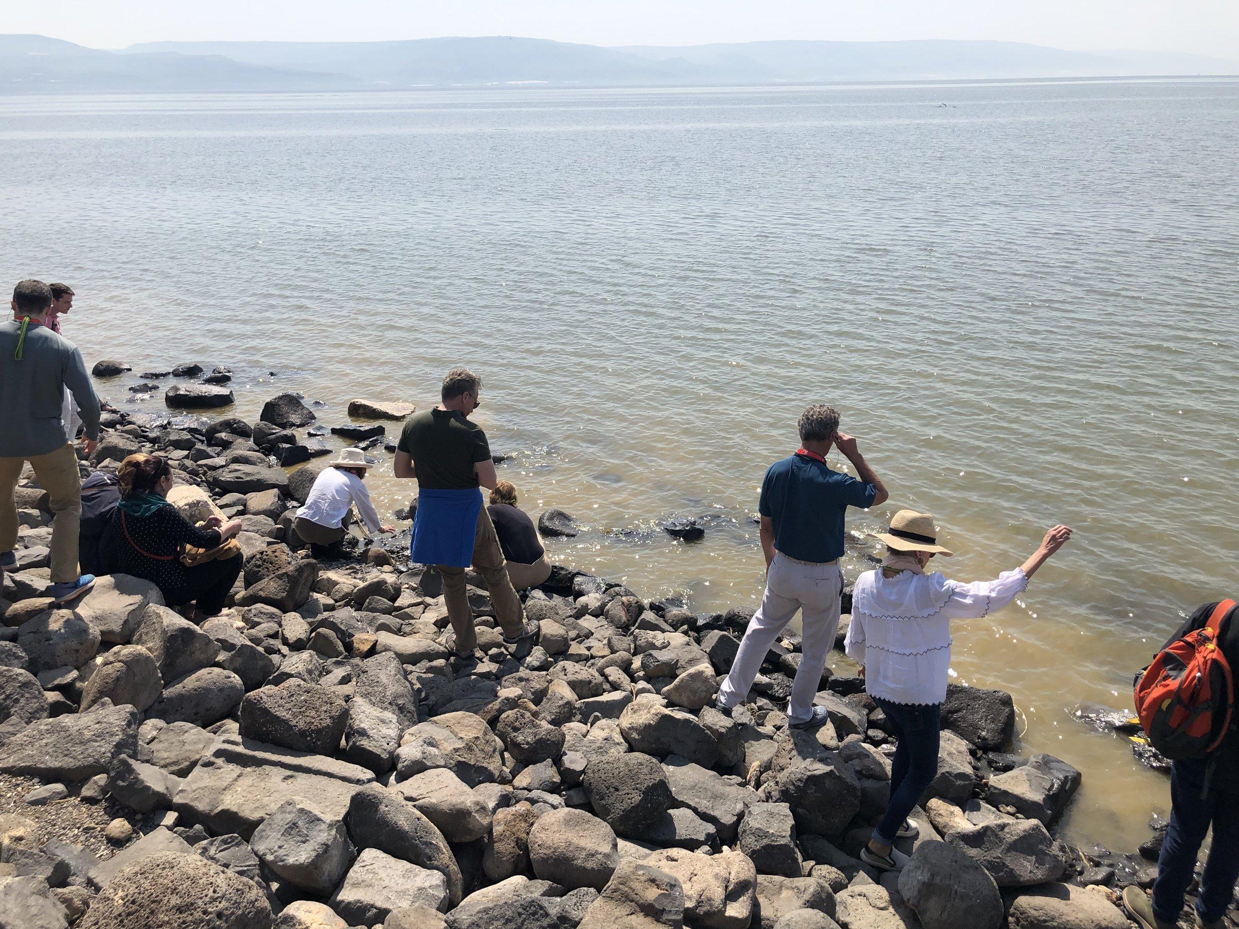 IT - Shore of Sea of Galillee 3.jpg