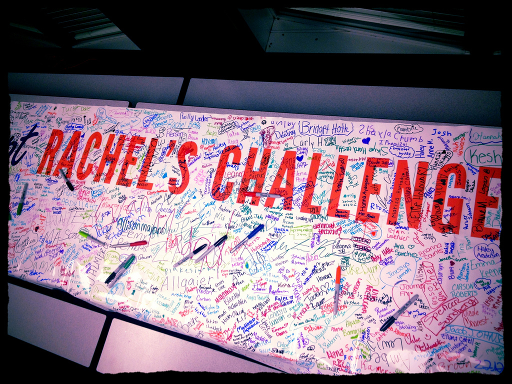 Rachel-2527s-Challenge-Banner-signed-by-1000-kids-and-teachers_9688210007_l.jpg