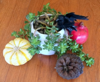 "Halloween themed centerpiece created using our existing plant, a tiny pumpkin, a pomegranate, a pinecone we found at the park and a black bird I saved from a Halloween years ago when I dressed at Tippi Hedren from ""The Birds."""