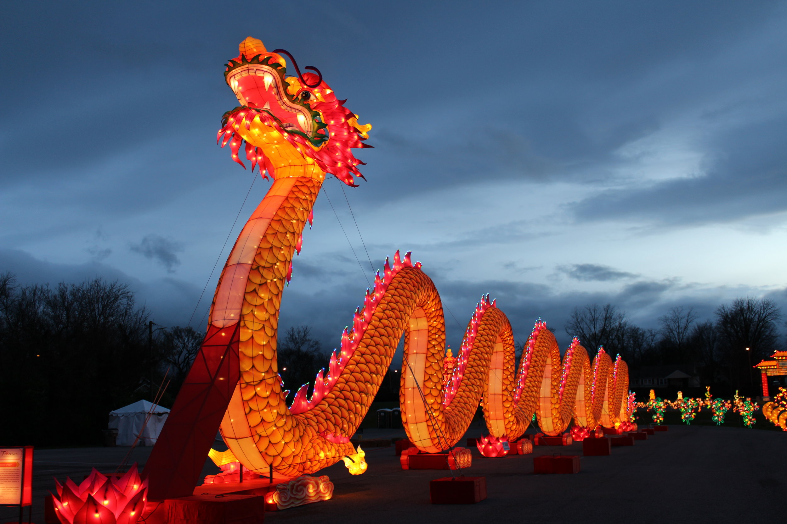 This dragon is the centerpiece of the festival, stretching hundreds of feet long. The dragon is a ancient symbol of good luck in Chinese culture.