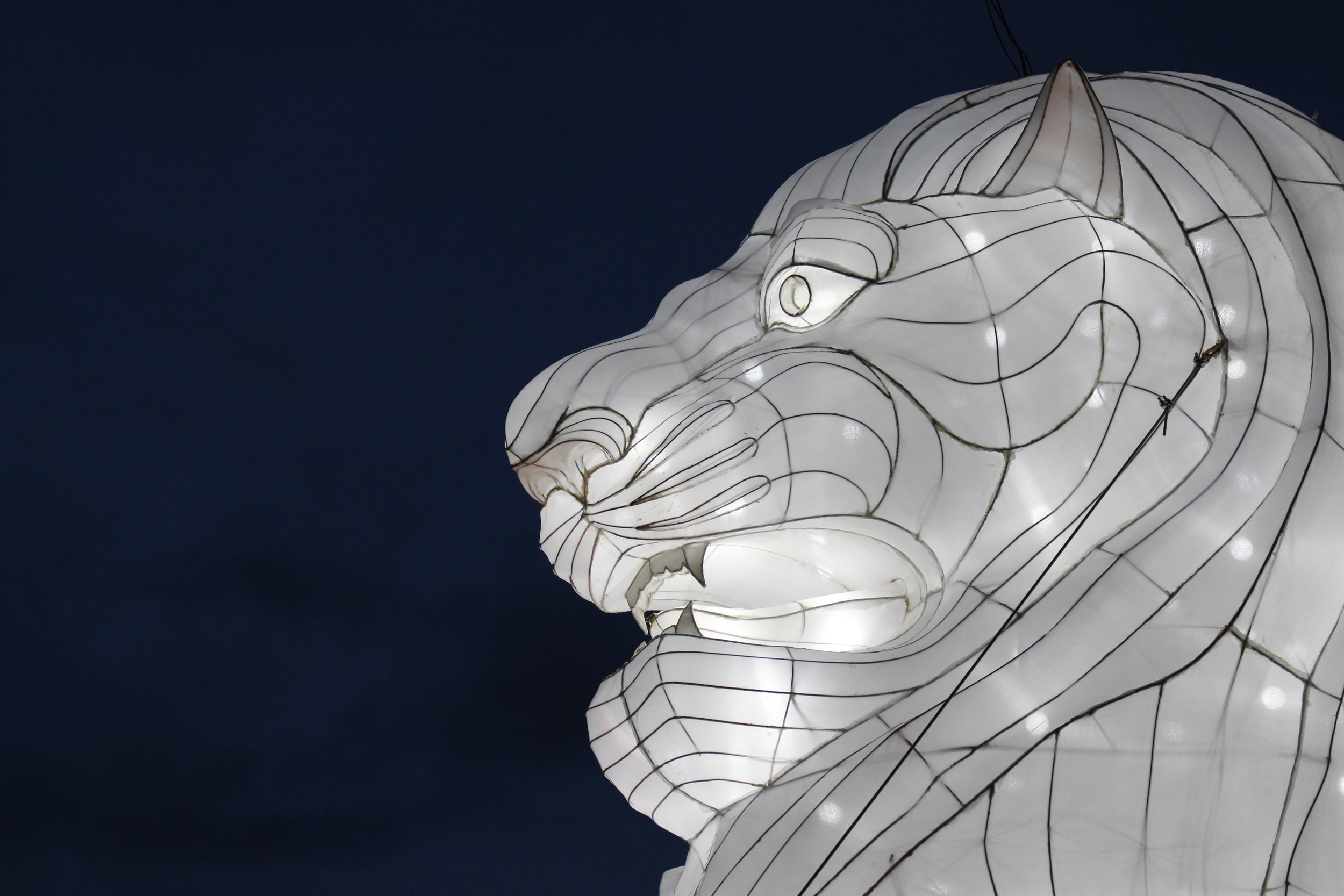 This towering Lion lantern is a recreation of the Singapore Merlion which is an iconic statue in Singapore.