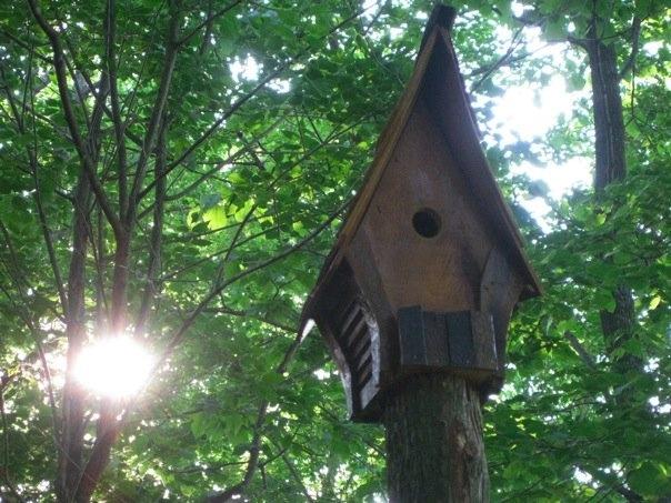 Bird Chalets