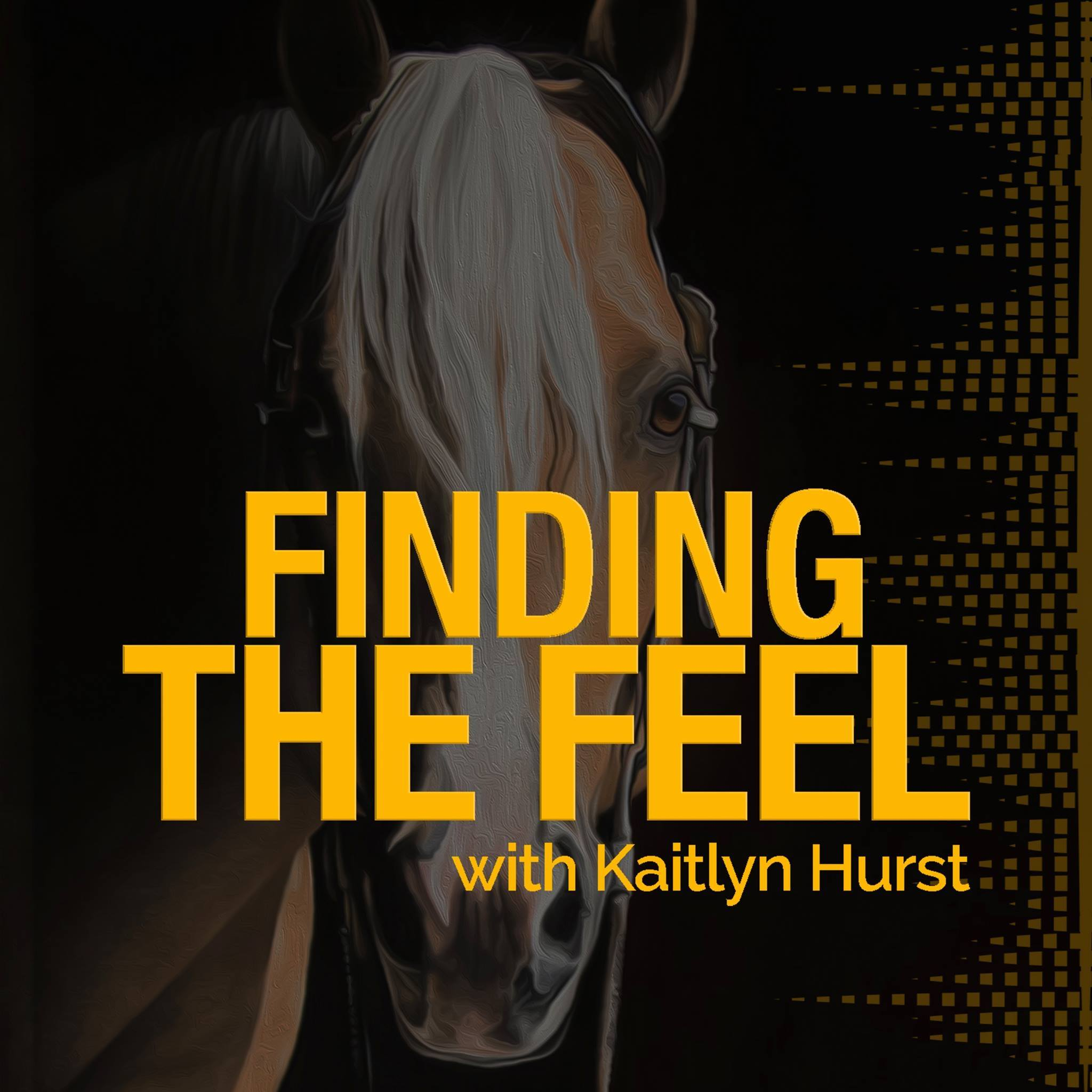 - Horse training from the human perspective. Much like NBA or NFL players do for the general public, we seek to make professional horsemen/women relatable to the everyday horse person, and empower improved horsemanship through extraordinary examples.
