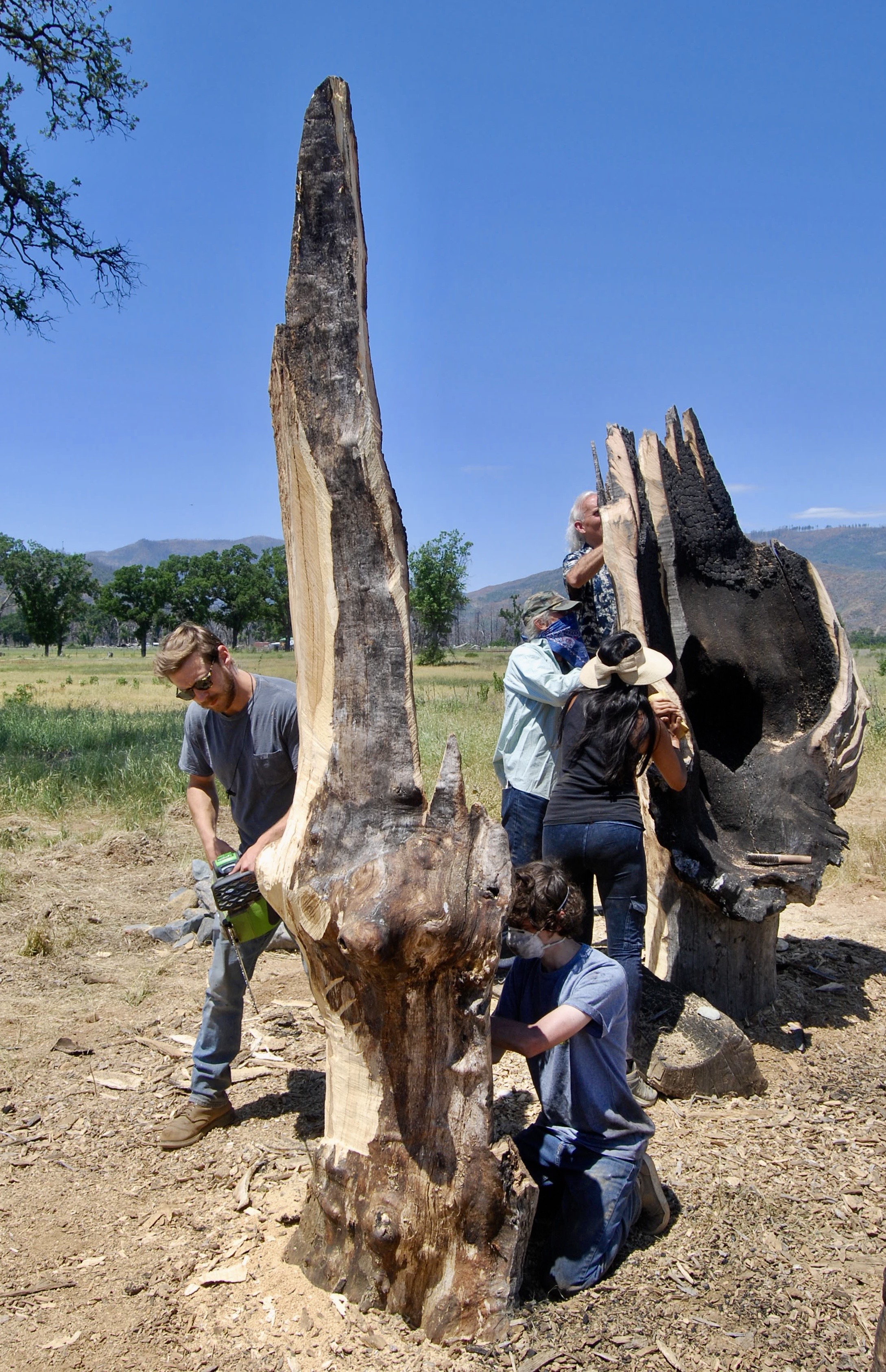 NATURAL WOOD SCULPTURE CLASS - 2019