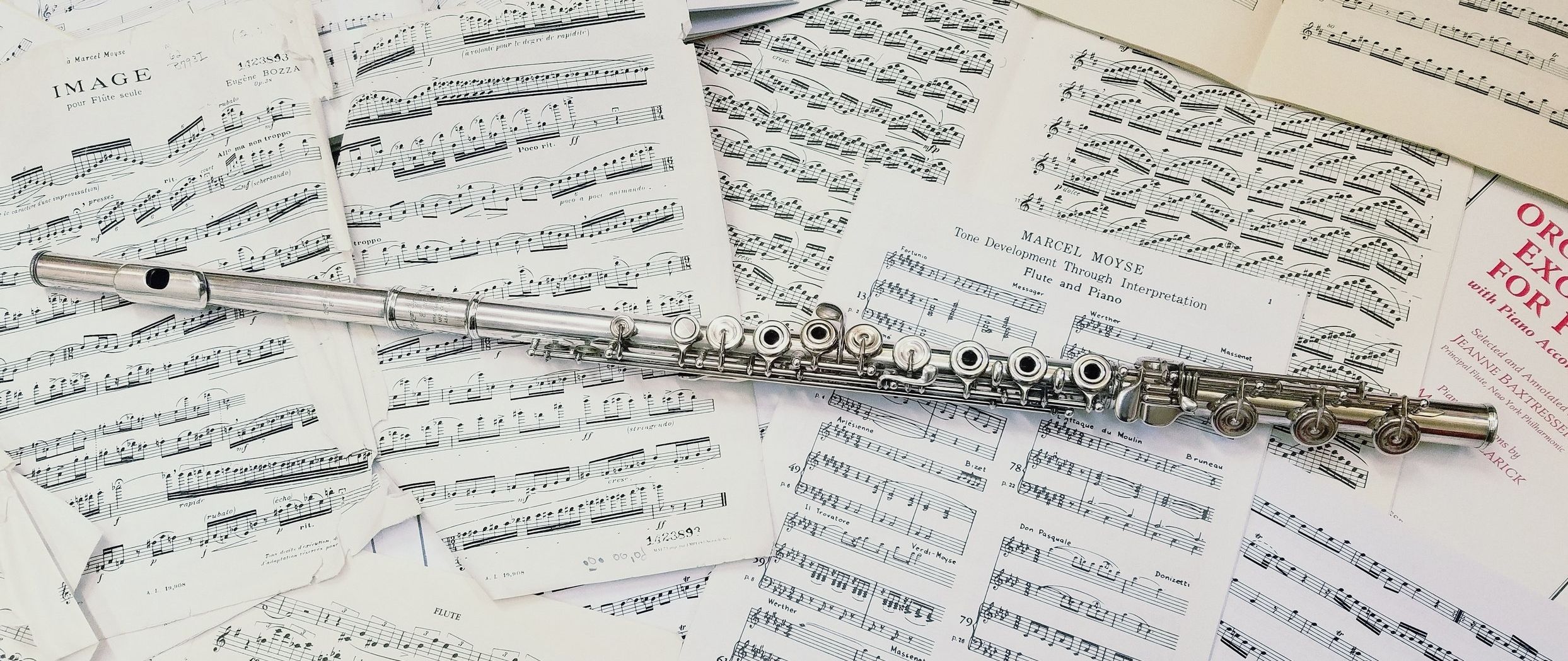 Flute Lessons - Beginner to Advanced