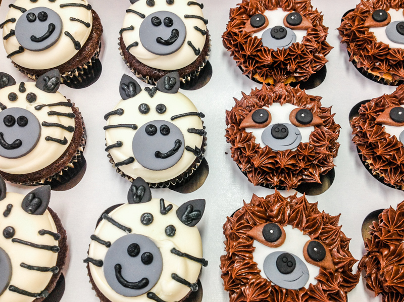Cupcakes-12.jpg