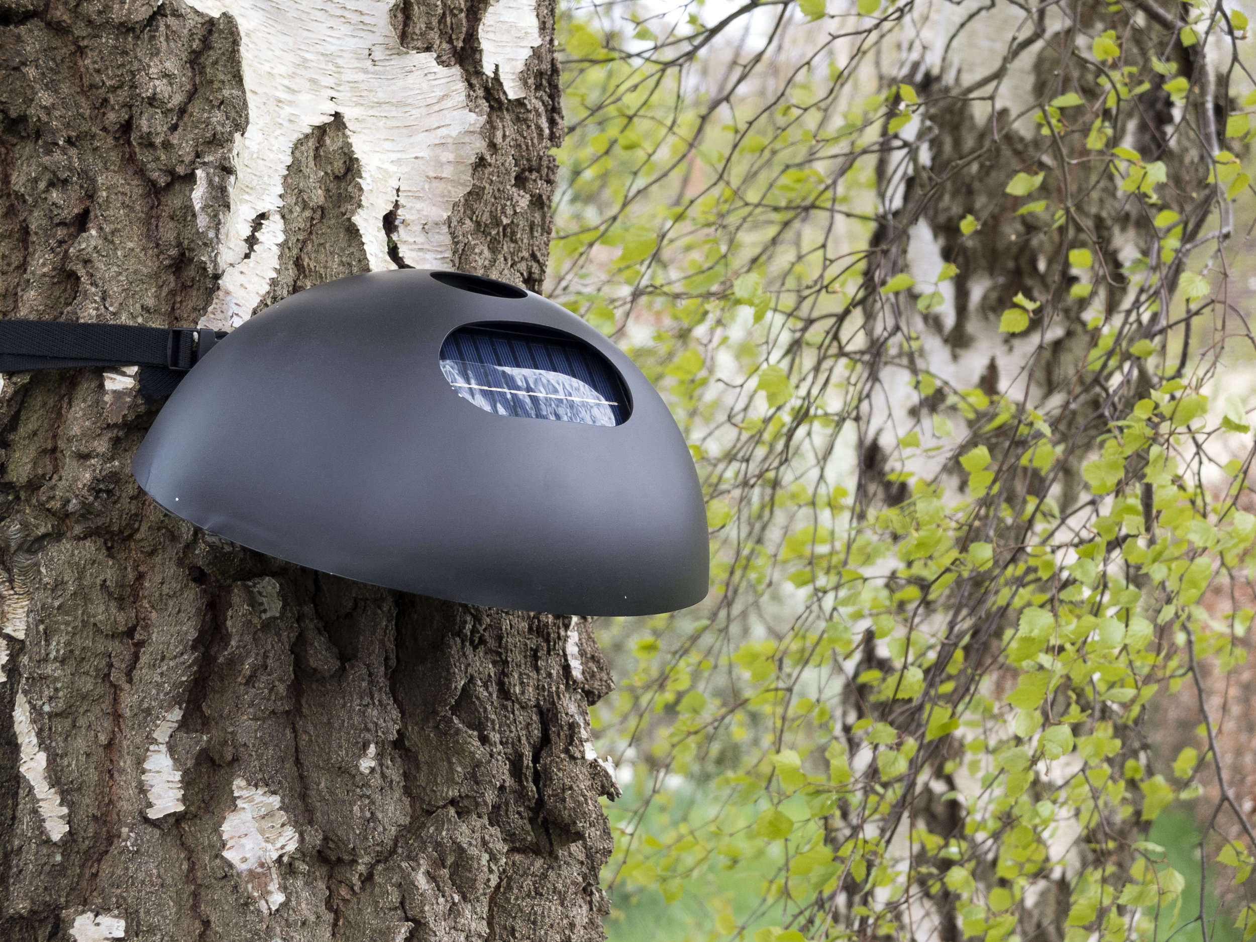 Pyromesh: sensor node, mountable on a tree