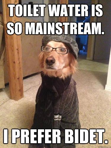 toilet-mainstream-bidet-hipster-dog