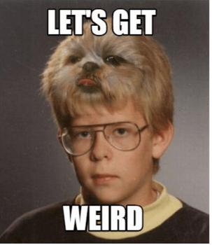lets-get-weird-paul-jarrett-meme