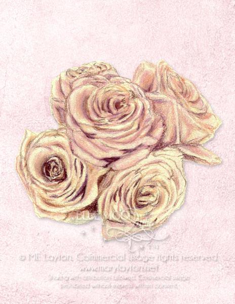 layton_rosecluster.jpg