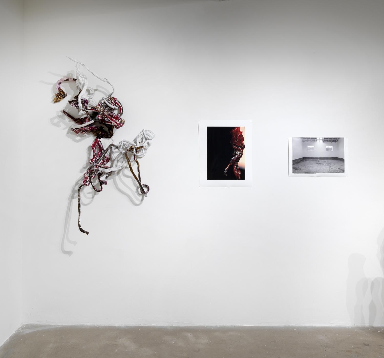 Sullivan Galleries 8741 Chicago 2013