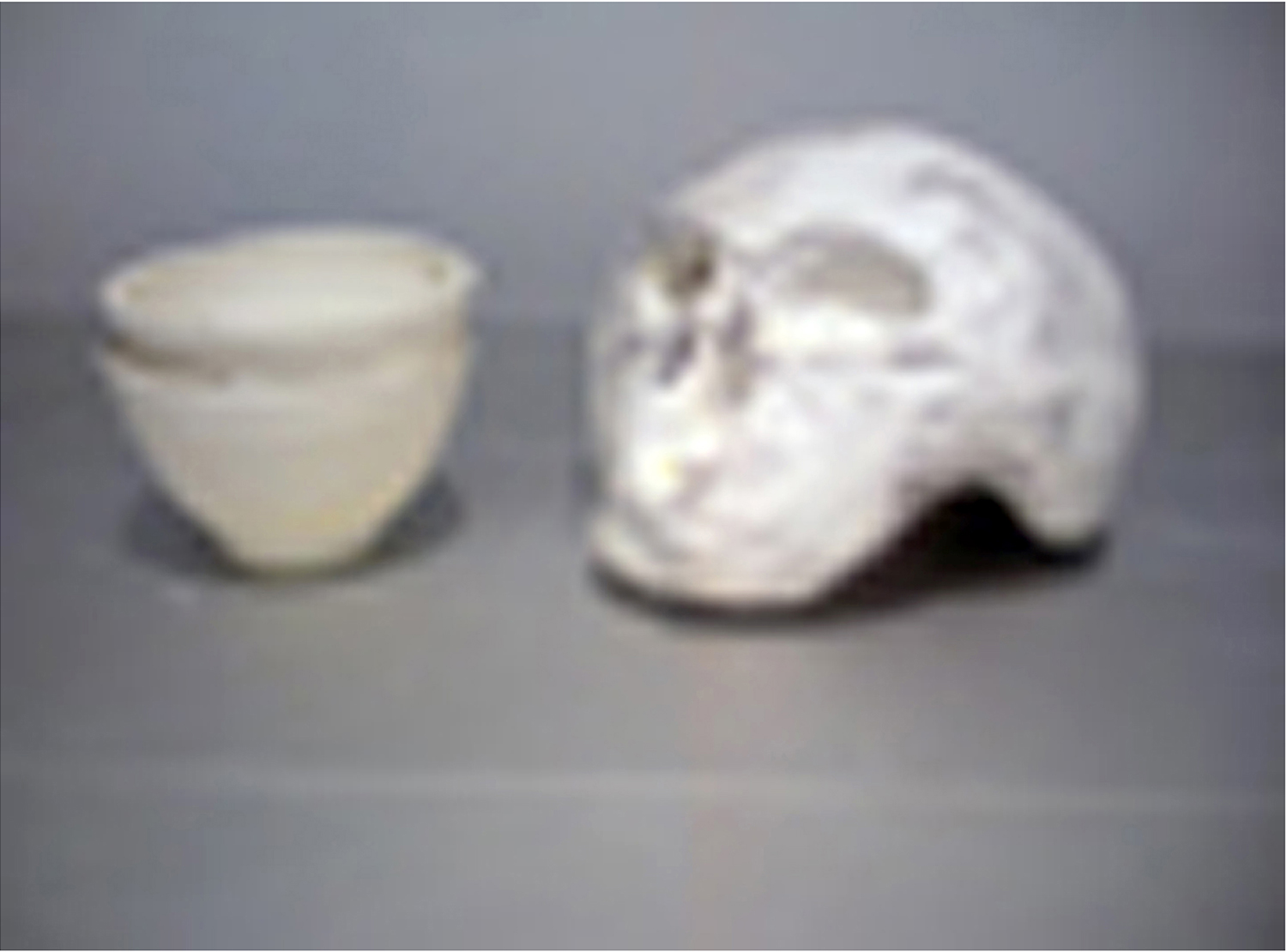 Cup Skull W, 012