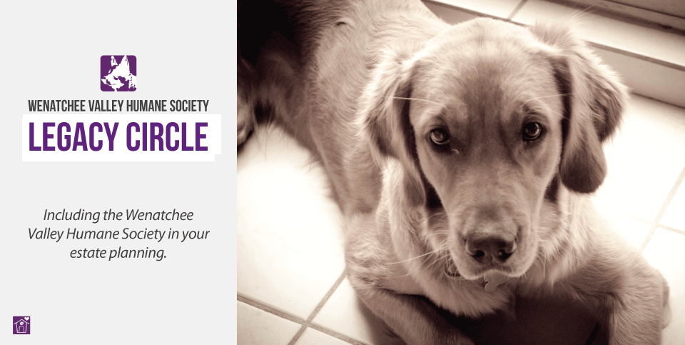 Include the Wenatchee Valley Humane Society in your estate planning.