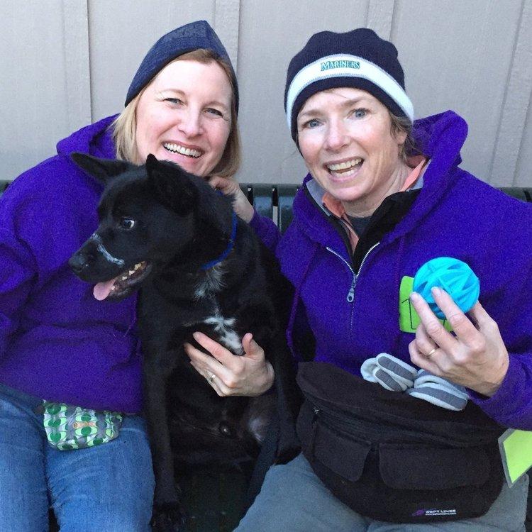 Wenatchee Valley Humane Society